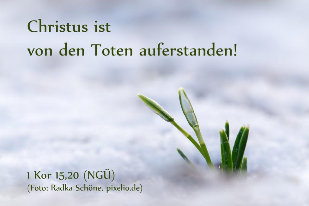 16013-Christus-ist-auferstanden