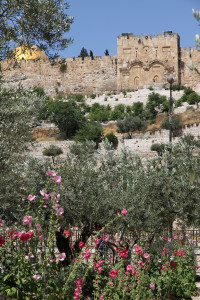 003-2017-05-28-0240-Jerusalem-GoldenesTor