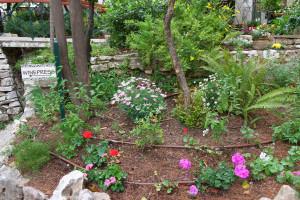 18-2013-04c-2957-Jerusalem-Gartengrab