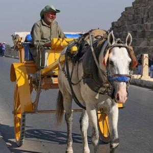 2019-11c-0304-Ägypten-Tag02-Pyramiden-Sphynx-Gizeh-edp-kl